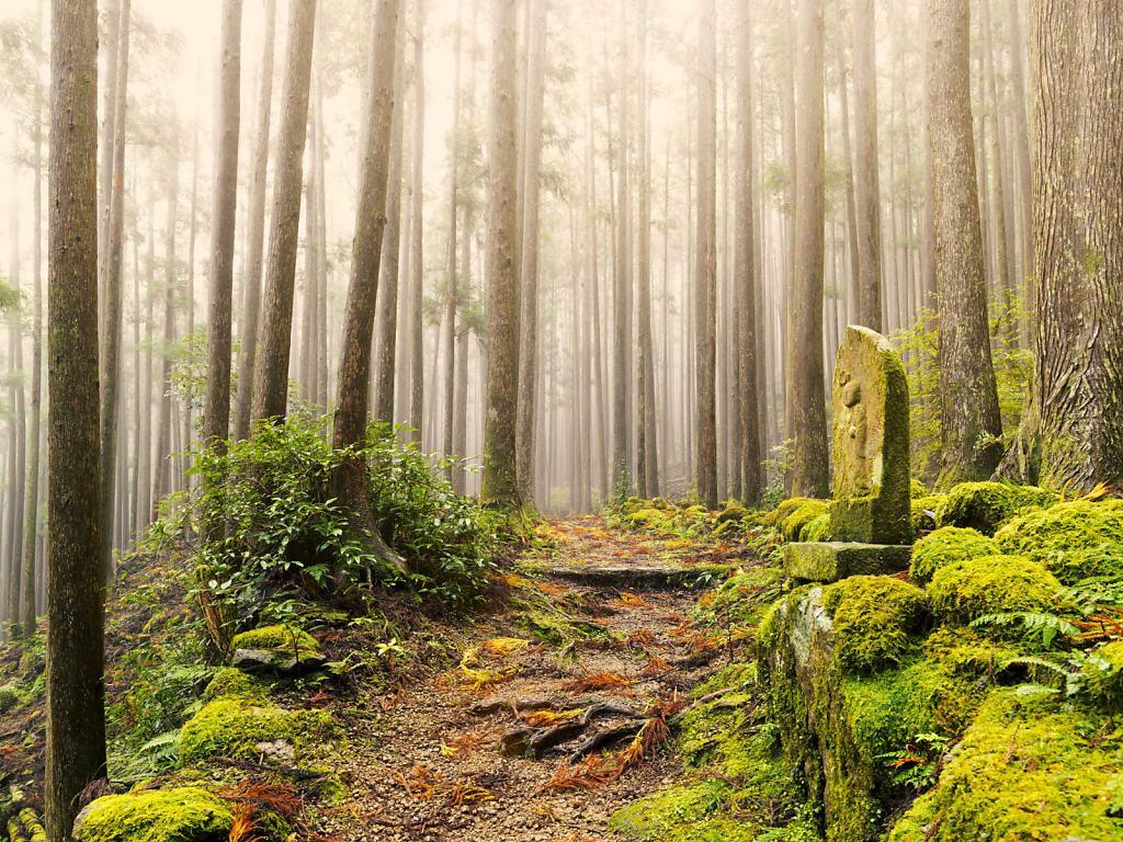 Daniel-Hager-Landscape-036.jpg