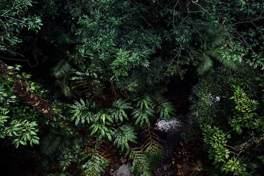 Daniel-Hager-Photography-Film-Zurich-Switzerland-2019-HKG-AUSTRALIA-6684.jpg